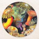 Ernst Haeckel Sea Anemones Vintage Art Round Paper Coaster