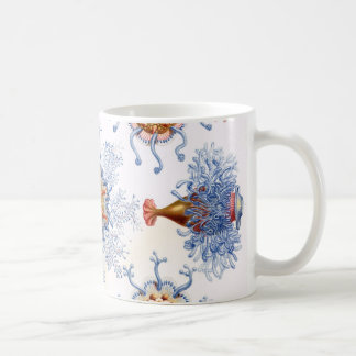 Ernst Haeckel Siphonophorae jellyfish bluebottle! Coffee Mug
