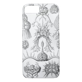 Ernst Haeckel  Spyroidea Sea Creatures iPhone 8/7 Case