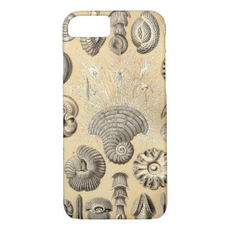 Ernst Haeckel Thalamophora shells iPhone 8/7 Case