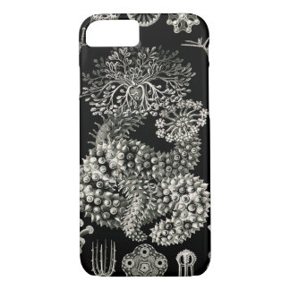 Ernst Haeckel Thuroidea Sea Cucumbers iPhone 8/7 Case