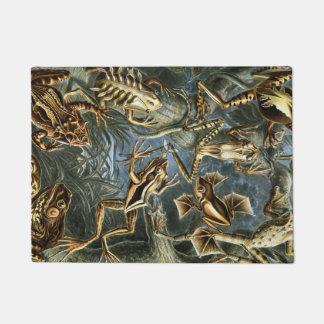 Ernst Haeckel variety of exotic frogs:Batrachia Doormat