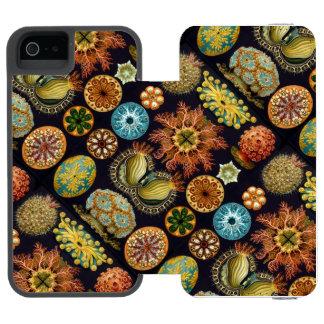 Ernst Haeckel's Actinae Ocean Life Incipio Watson™ iPhone 5 Wallet Case