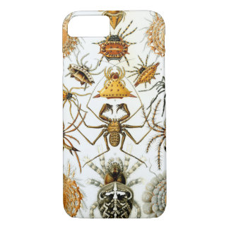 Ernst Haeckel's Arachnida Spiders iPhone 8/7 Case