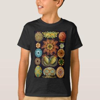 Ernst Haeckel's Ascidiae Ocean Life T-Shirt