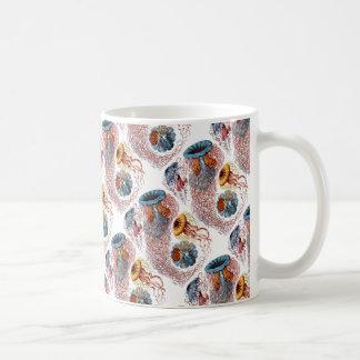Ernst Haeckel's Disco Medusae Coffee Mug