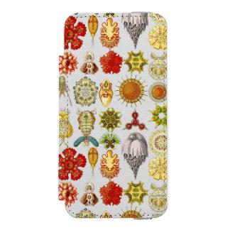Ernst Haeckel's Oceanic Wonders Incipio Watson™ iPhone 5 Wallet Case