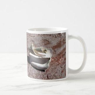 Eroded shell, Los Gatos anchorage Coffee Mug