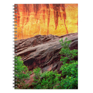 Escalante Neon Canyon and Foliage | Utah Spiral Notebook
