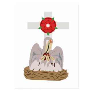 Esoteric Pelican Postcard