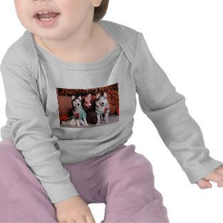 Espy and Domino - Siberian Huskies - LeCount Shirt