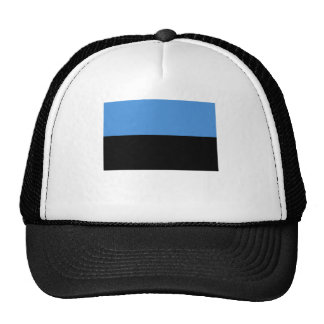 Estonia flag all over design cap