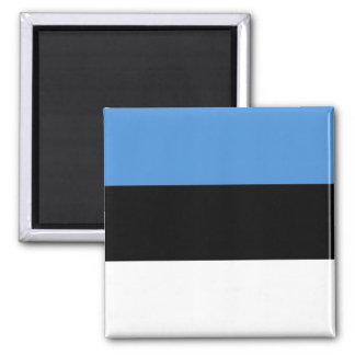 Estonia Flag EE Square Magnet
