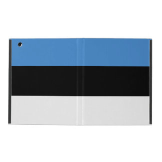 Estonia Flag iPad Cover