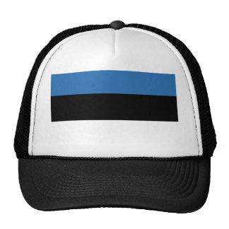 Estonian Falg Cap