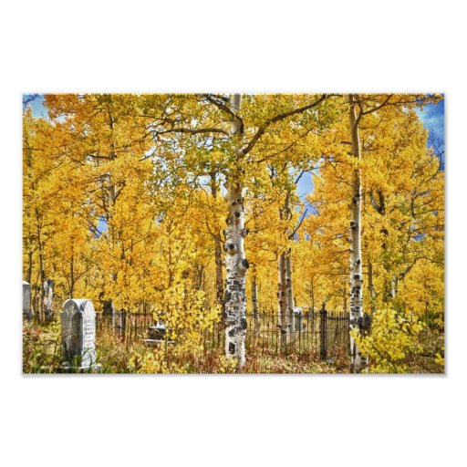 Eternal Autumn Resting Place Photographic Print