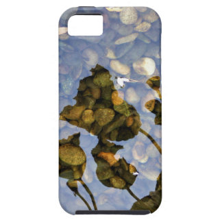 Ethereal Lotus iPhone 5 Cover