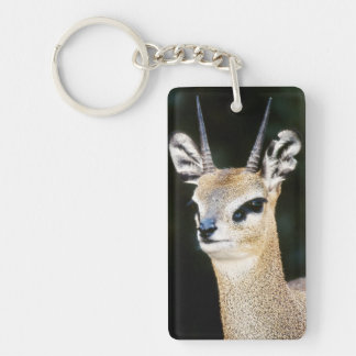 Ethiopia, Klipspringer looking away Key Ring
