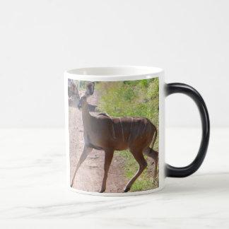 Ethiopian mug