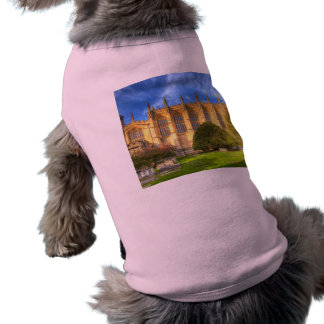 Eton College Chapel Shirt