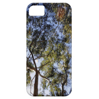 Eucalyptus Tree Canopy Barely There iPhone 5 Case