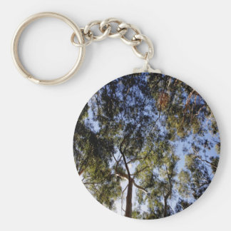 Eucalyptus Tree Canopy Key Ring