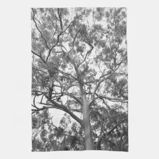 Eucalyptus Tree Hand Towels