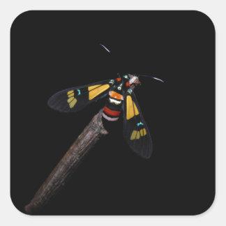Euchromia foletti collectible moth sticker