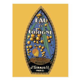 Eud De Cologne Mimosa Postcard