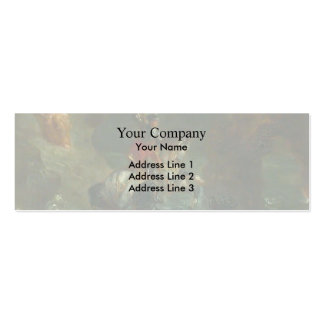 Eugene Delacroix- Saint George Fighting the Dragon Business Card