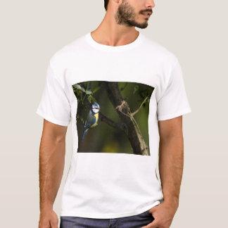 Eurasian blue tit, cyanistes caeruleus T-Shirt