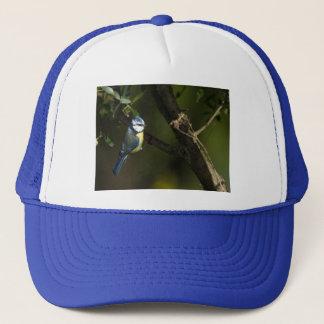 Eurasian blue tit, cyanistes caeruleus trucker hat