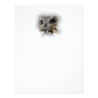 Eurasian Eagle-owl 21.5 Cm X 28 Cm Flyer