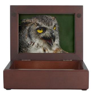 Eurasian eagle-owl keepsake box