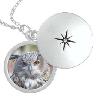 Eurasian Eagle-Owl, Uhu Round Locket Necklace