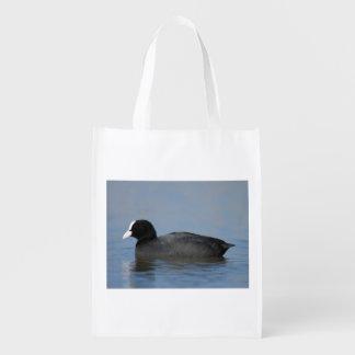 Eurasian or common coot, fulicula atra, portrait o reusable grocery bag