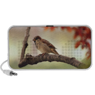 Eurasian Tree Sparrow Doodle Speaker