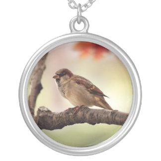 Eurasian Tree Sparrow Necklace