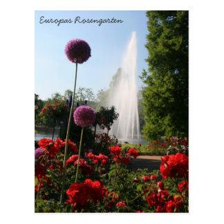 Europas Rosengarten Post Cards