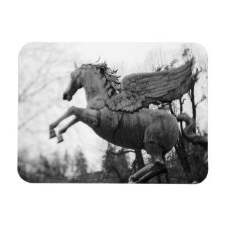 Europe, Austria, Salzburg. Winged horse statue, 2 Rectangular Photo Magnet