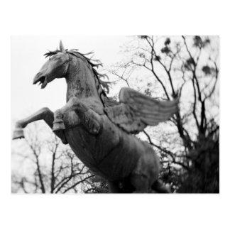 Europe, Austria, Salzburg. Winged horse statue, Postcard