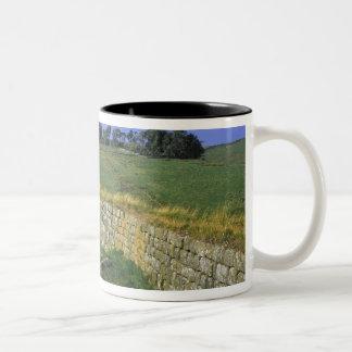 Europe, England, Hadrian's Wall. The stones of Two-Tone Coffee Mug