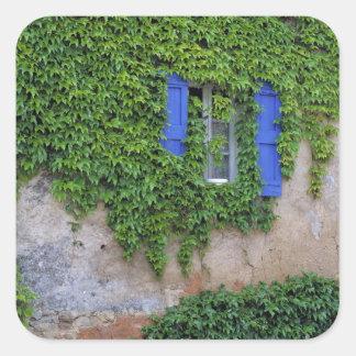 Europe, France, Lourmarin. Cascading ivy Square Sticker