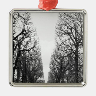 Europe, France, Paris. Winter trees, Marco Polo Silver-Colored Square Decoration