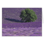 Europe, France, Provence, Sault, Lavender fields Card