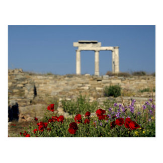 Europe, Greece, Cyclades, Delos. Column ruins. Postcard