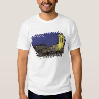 Europe, Italy, Florence, Architectural detail; T Shirts