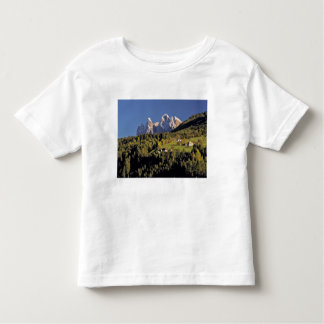 Europe, Italy, San Pietro. The Odle Group seem T-shirt