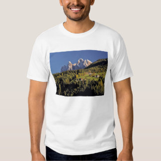 Europe, Italy, San Pietro. The Odle Group seem T Shirts