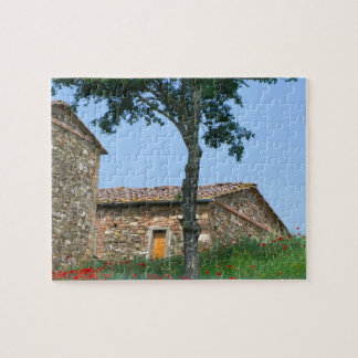 Europe, Italy, Tuscany, abandoned villa in Jigsaw Puzzle